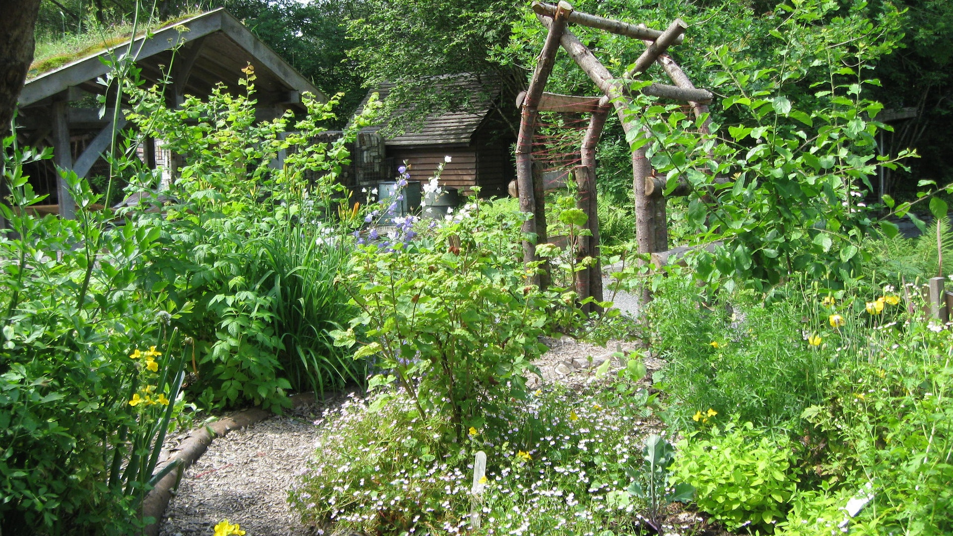 Forest garden display area at CAT
